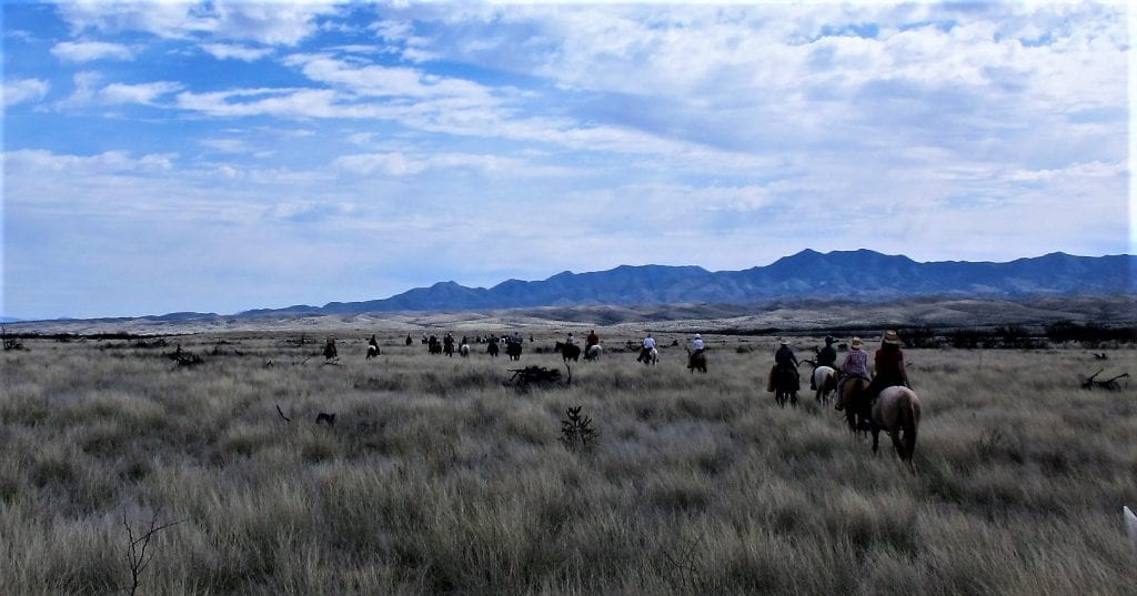Picture of the Las Cinegas National Conservation Area; location of the Empire Ranch Spring Trail and Wagon Ride