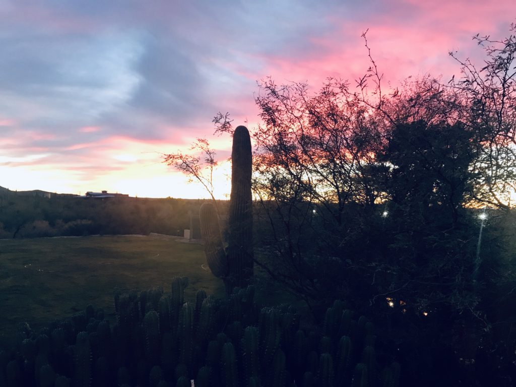 a picture of the Tucson sunset